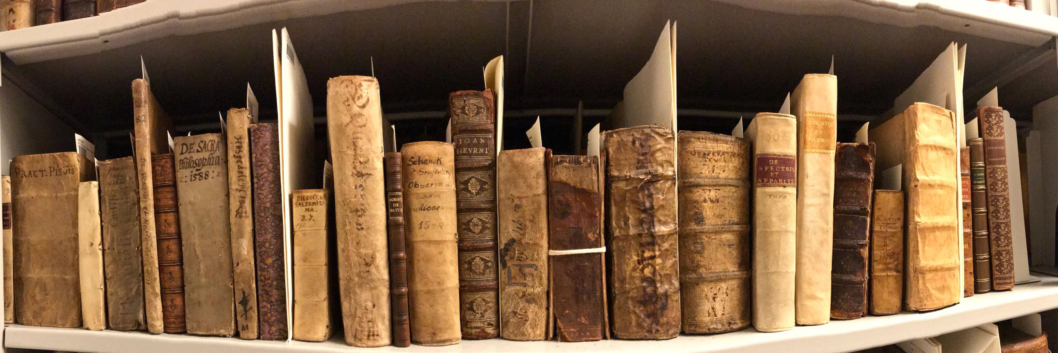 Oskar Diethelm Library Stacks